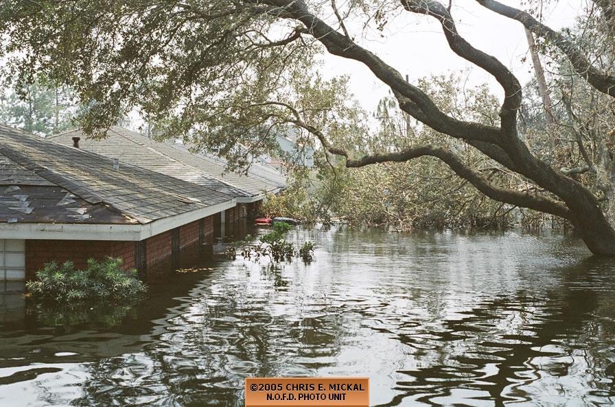 Hurricane Katrina Flooding Fireline Photos